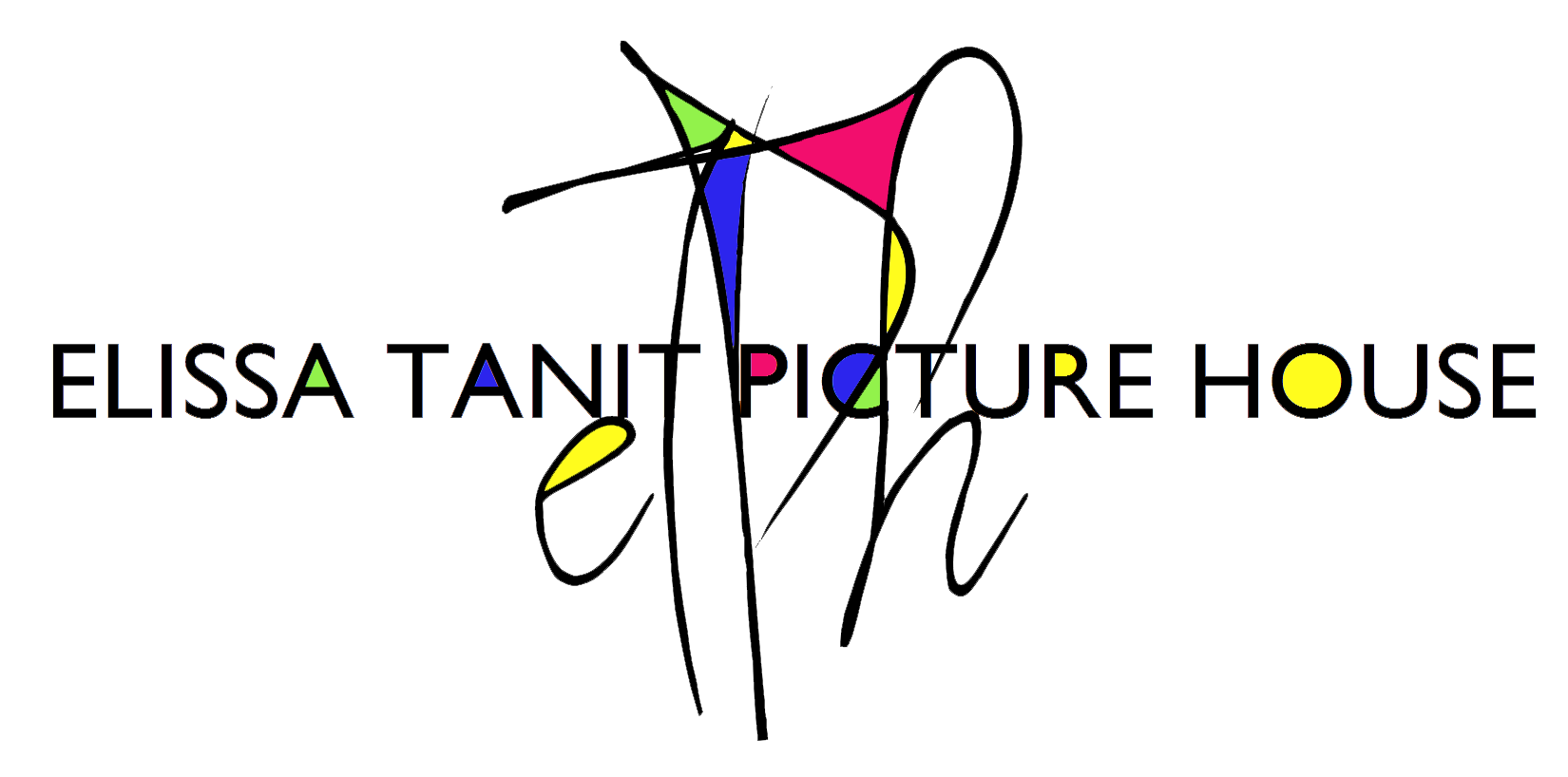 Elissa Tanit Picture House - make good art